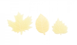 White Leaves set